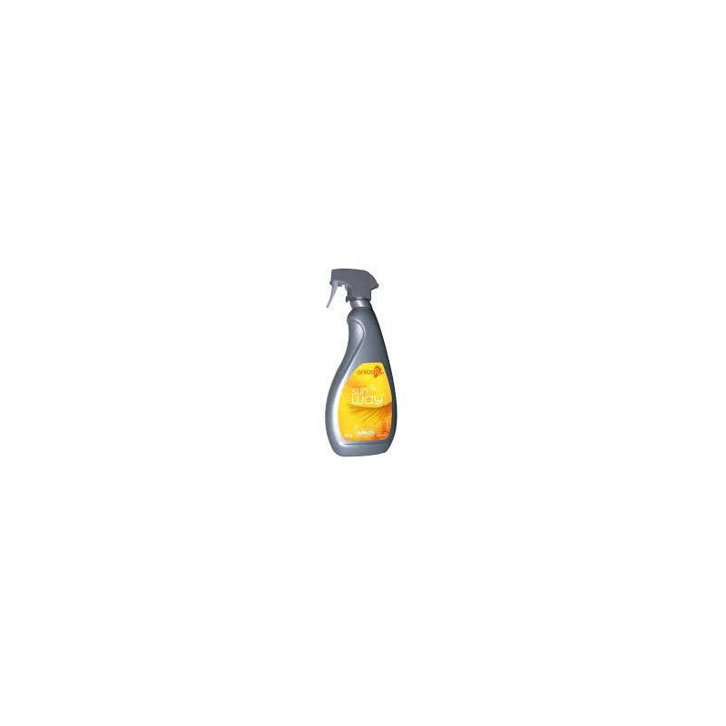Nettoyant Désinfectant Anios'R Spray 750 ml